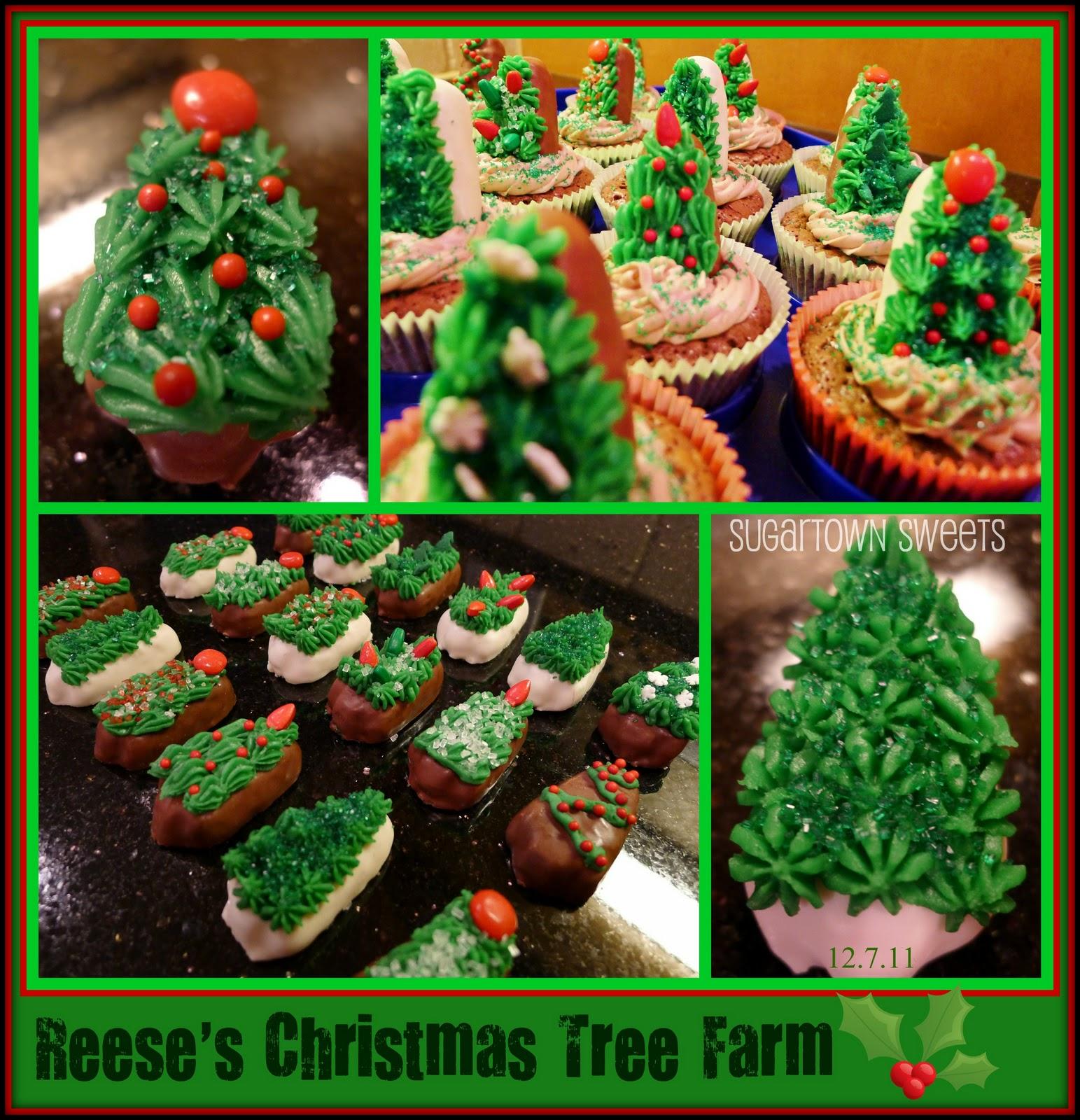Water And Sugar For Christmas Tree: Sugartown Sweets: Reese's Christmas Tree Farm