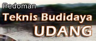 Budidaya udang windu