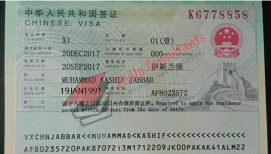 29 Official China Visa Application Form on completion instructins, service center, form fillable, service center singapore, form.pdf, form for study,