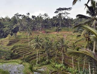 Urlaub Indonesien, viele Aspekte