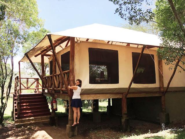 namiot, safari