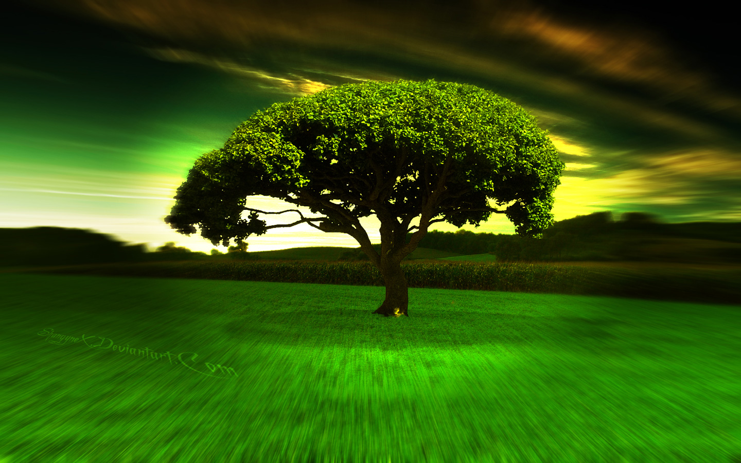 Free Download 40+ Cool Wallpapers 2013 Full Hd(1080p