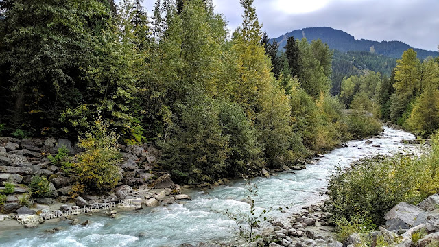 Mountain and forest stream in British Columbia