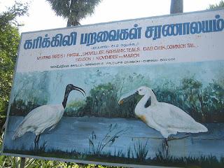 Water Sanctuaries in Tamil Nadu