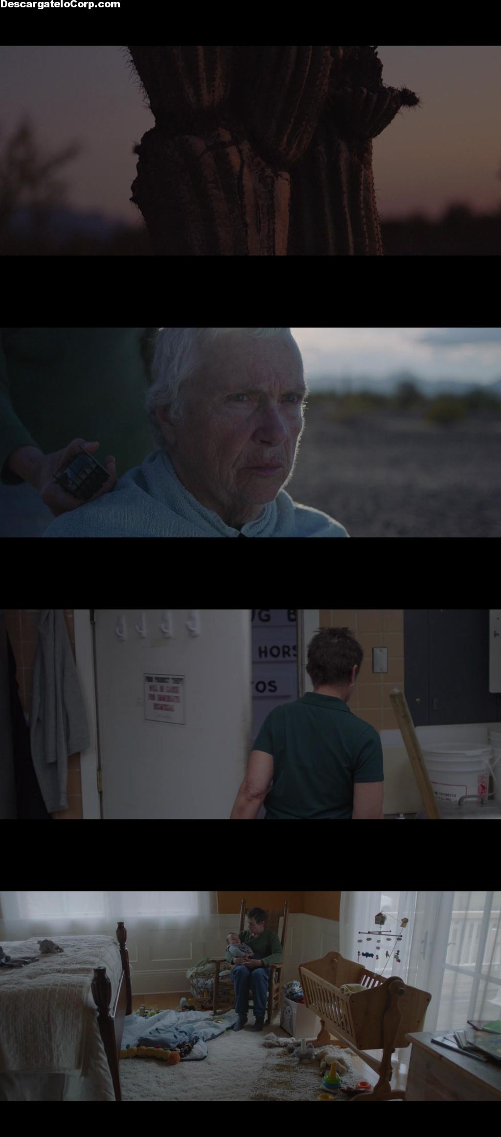Nomadland (2020) HD 1080p