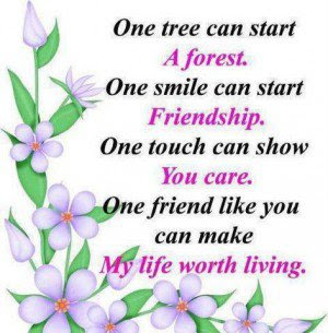 Good Morning Quotes For Friends: one tree can start a forest.