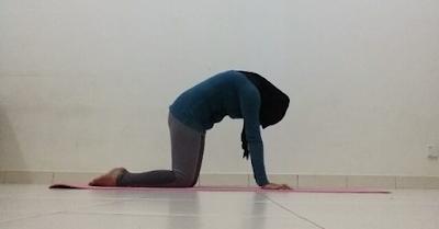 Yoga, senaman, fitness, workout, senaman untuk kempiskan perut, posisi yoga, cat scretch pose