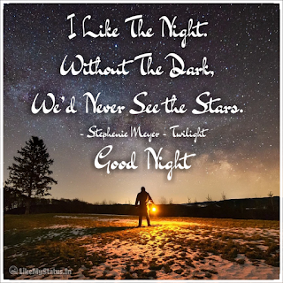 I Like The Night. Without The Dark, We'd Never See the Stars. - Stephenie Meyer - Twilight