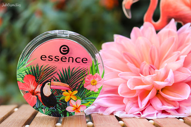 essence-exit-to-Explore-blush-01-my-heart-is-beating-like-a-jungle-drum