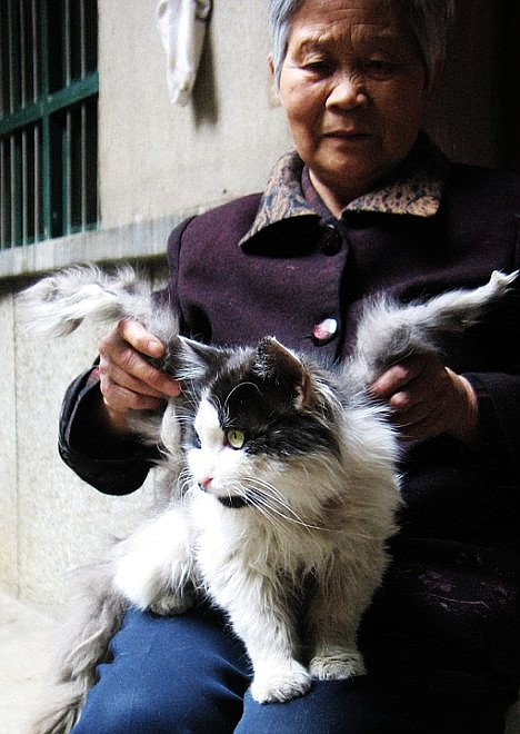 woman holding cat's wings