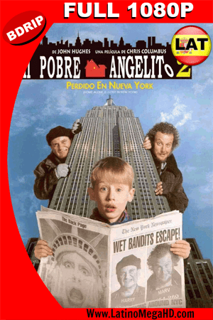 Mi Pobre Angelito 2: Perdido en Nueva York (1992) Latino Full HD BDRIP 1080P ()