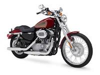 Hot Harley Davidson