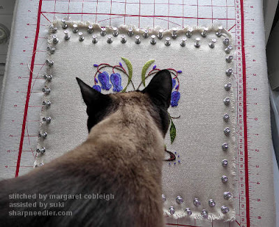 Siamese cat checks out blocked crewel bluebells