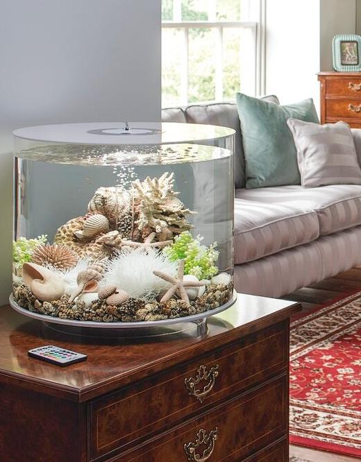 Column Aquarium Tank