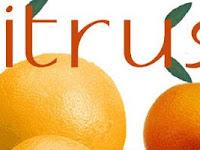 Manfaat Tersembunyi Mencium Aroma Citrus