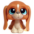 Littlest Pet Shop Basset Hound Generation 3 Pets Pets