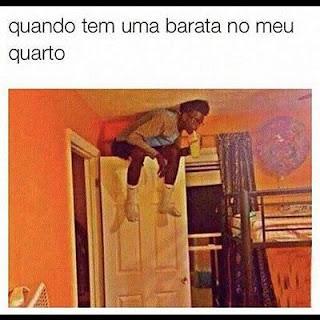 credo, memes, humor, memes engraçados, ana maria, memes brasileiros, melhor site de memes, site de piada, melhores memes, barata no quarto, medo de barata