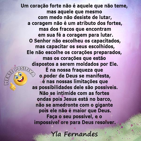 Yla Fernandes - Mente Positiva