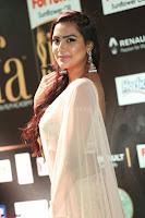 Prajna Actress in backless Cream Choli and transparent saree at IIFA Utsavam Awards 2017 0067.JPG