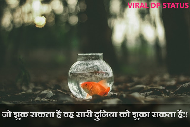 Thoughts in hindi for life,thought in hindi on life,golden thoughts of life in hindi,good thoughts in hindi for life,good thoughts about life in hindi,inspirational quotes in hindi,motivational thoughts in hindi with pictures