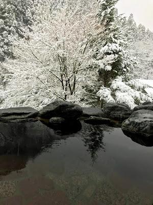 【北西へ吉方位旅行】落ち着いたリゾートの谷川温泉で源泉かけ流し