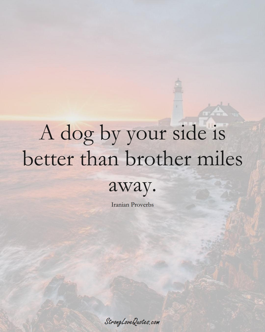A dog by your side is better than brother miles away. (Iranian Sayings);  #MiddleEasternSayings