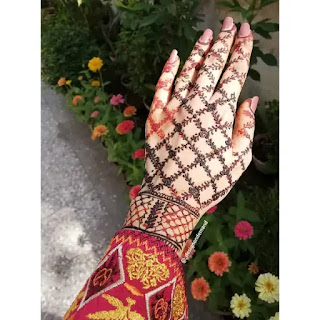 Net_with_leaves_henna_design