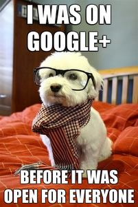 Google Plus funny pictures vs Facebook