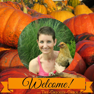 Welcome to The Clever Chicks Blog Hop at The Chicken Chick®