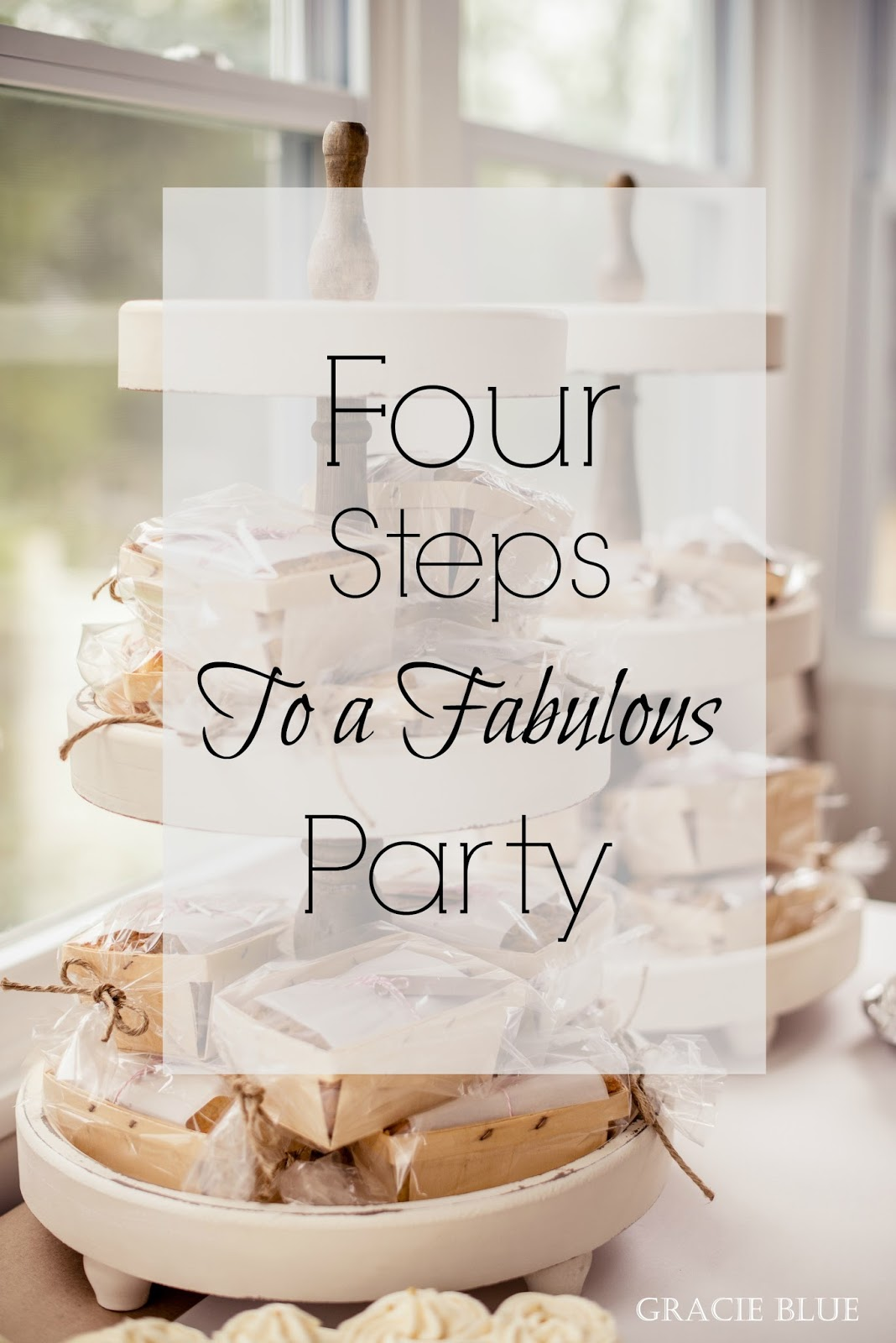 gracie blue four steps to a fabulous party gracie s first holy