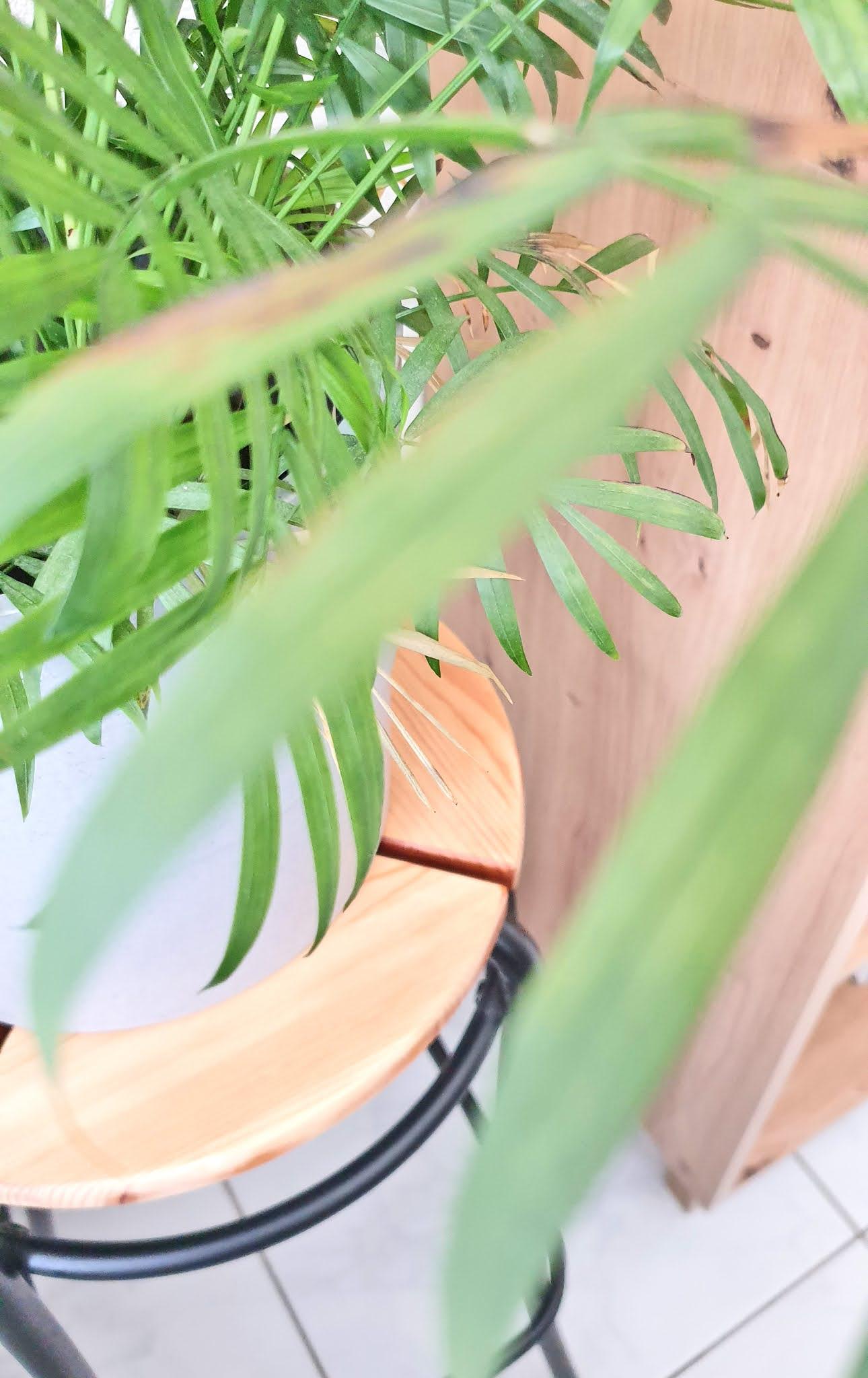 stojak na kwiaty drewniany ikea