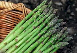 Efficacy and Asparagus Benefits for Health