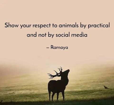 Ramesh Kumar P Quote-2