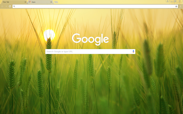 Barley Field Google Theme