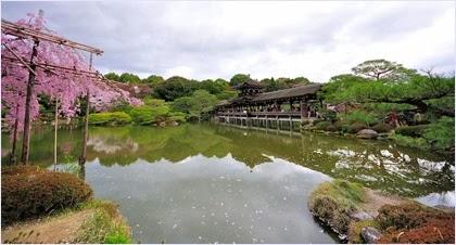 สวนด้านหลังศาลเจ้าเฮอัน (Heian Shrine)