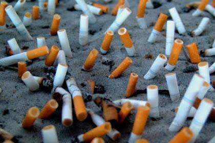 Buanglah Puntung Rokok Pada Tempat Sampah