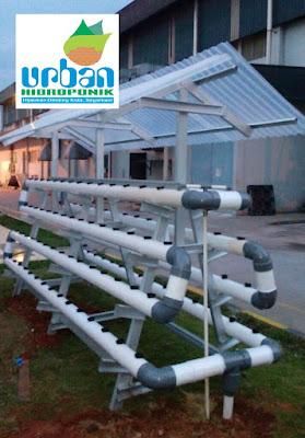 urban hidroponik, urban farming, jasa hidroponik