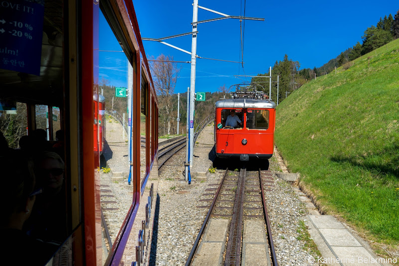 Mt. Rigi Cogwheel Train Two Days in Lucerne Luzern Switzerland