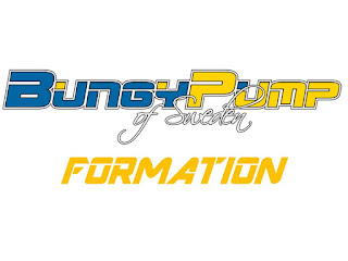 Bungy Pump of Sweden Formations France logo