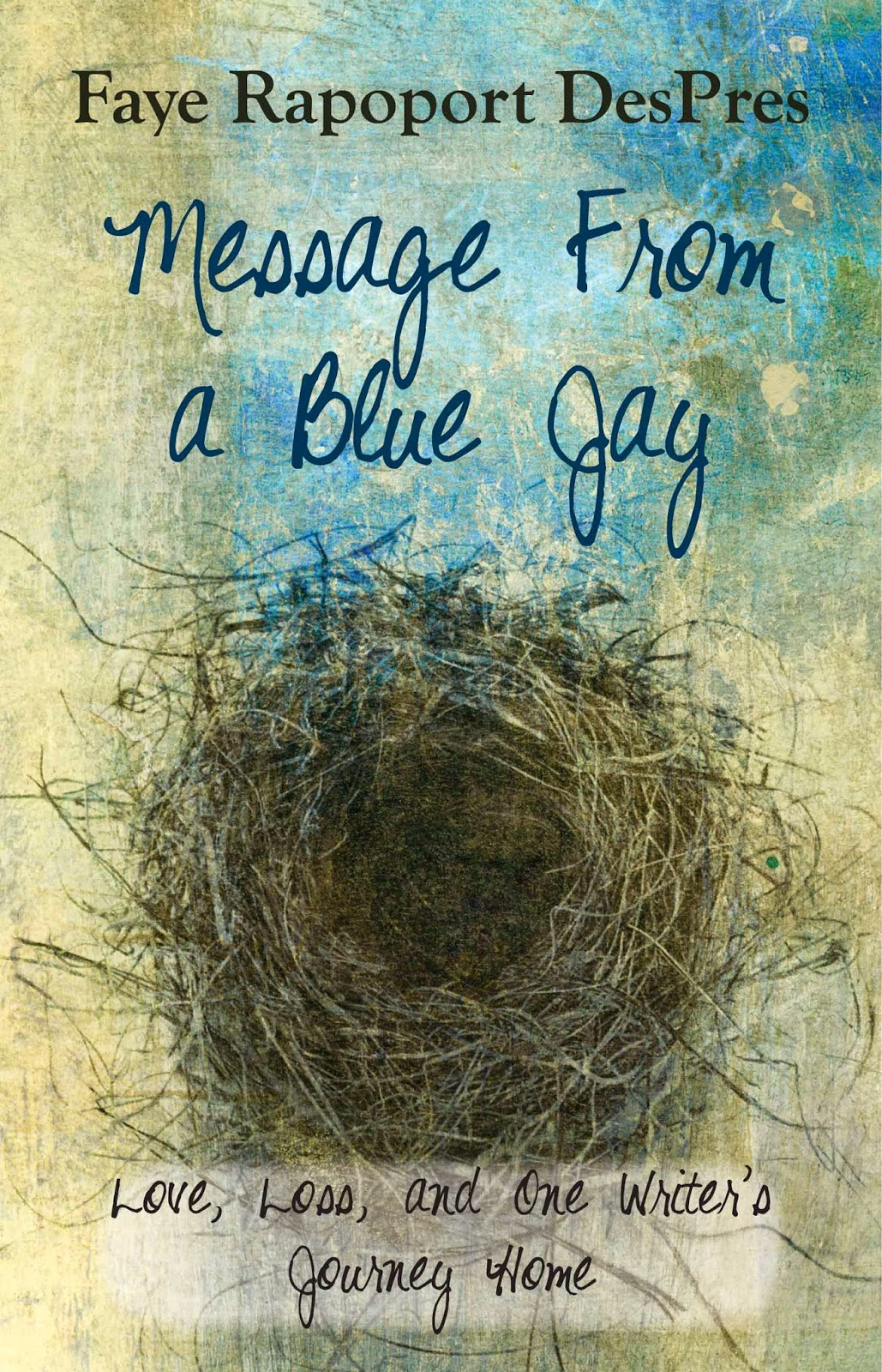 http://www.amazon.com/Message-Blue-Jay-Writers-Journey/dp/0984203524/ref=pd_rhf_se_p_dnr_1