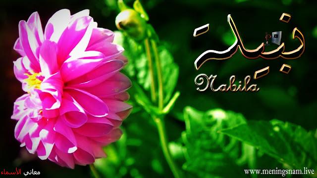 معنى اسم نبيلة وصفات حاملة هذا الإسم Nabila,