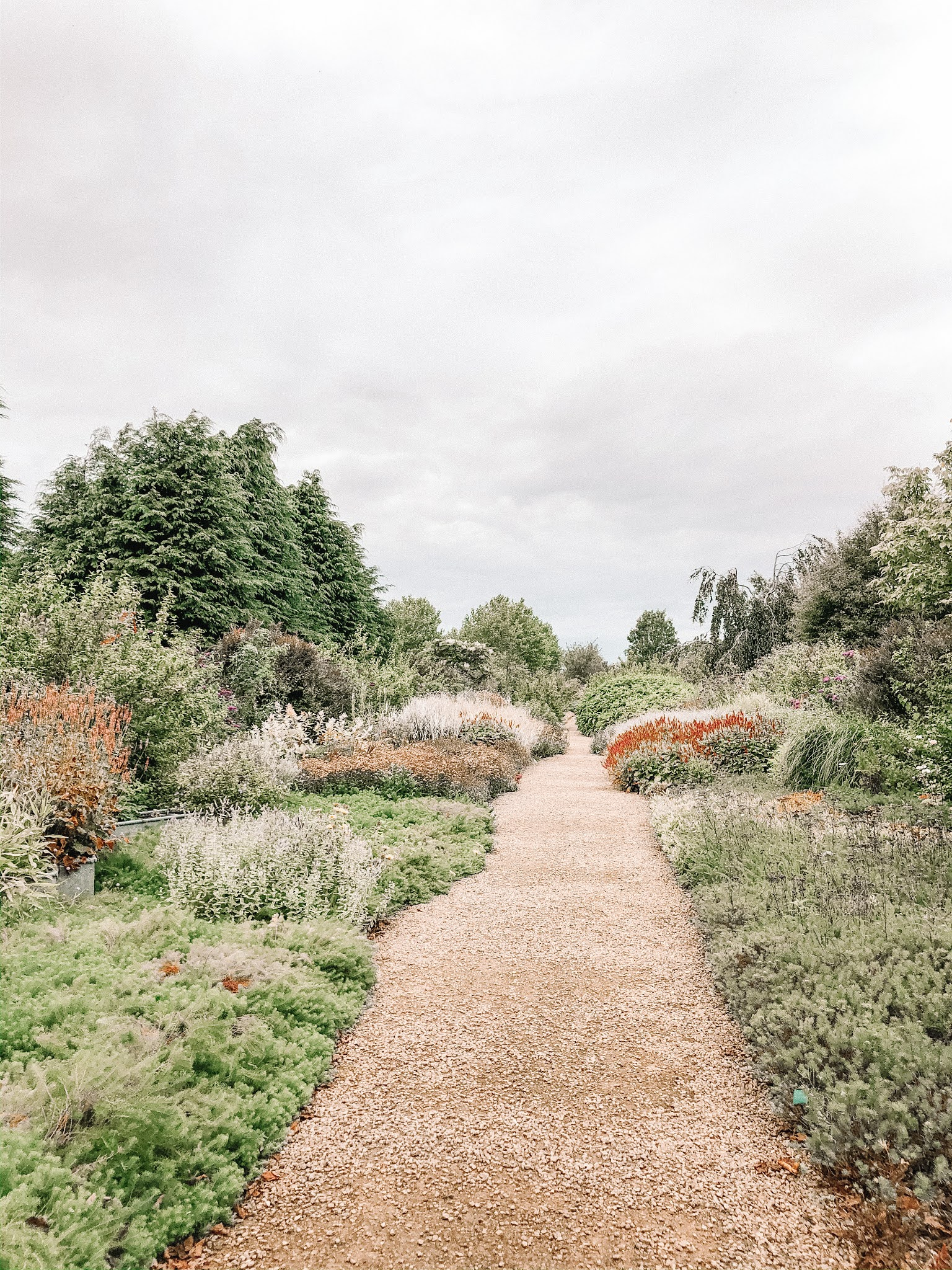 An Afternoon At Breezy Knees Gardens