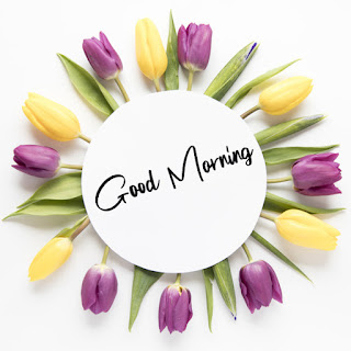 Good Morning Royal Images Download for Whatsapp Facebook6