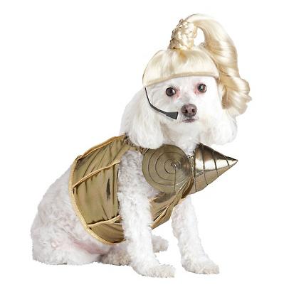 Halloween Costume Ideas: Doggie Edition ~ Village Shoes ...