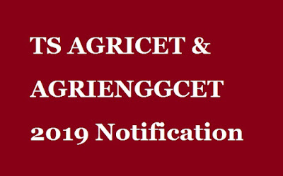 TS-AGRICET-AGRIENGGCET-2019-Notification-Govtjobs-all