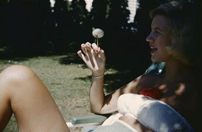 Resultado de imagem para sylvia plath filme
