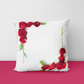cushion cover pillow