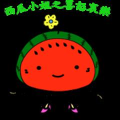 Lady Watermelon