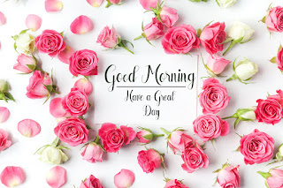 Good Morning Royal Images Download for Whatsapp Facebook73