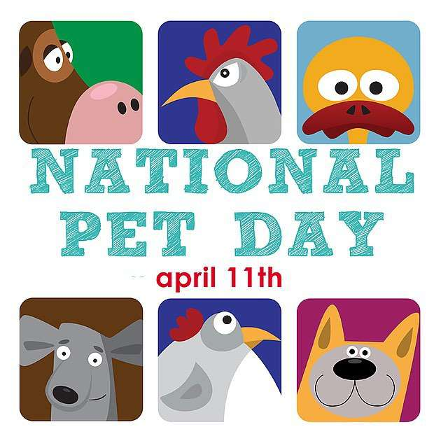 National Pet Day Wishes for Whatsapp